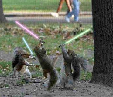 squirrels_lightsabers